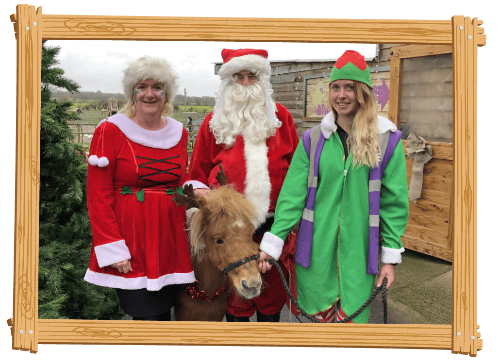 Have a Festive Christmas at Blackberry Farm Park