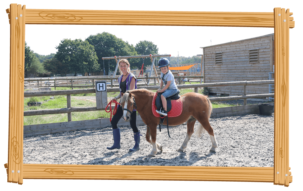 Be a Pony Owner for the day at Blackberry Farm Park, Whitesmith